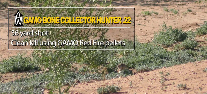 Gamo Bone Collector Break Barrels